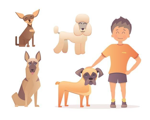 อุปกรณ์ฝึกลูกสุนัขและผลิตภัณฑ์สำหรับลูกสุนัข